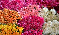 Descubre los hermosos diseños florales para la decoración de tu boda con Magnolia Diseño Floral