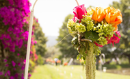 ¡Ten la boda de tus sueños! Conoce a Adriana Estrada Wedding Planner
